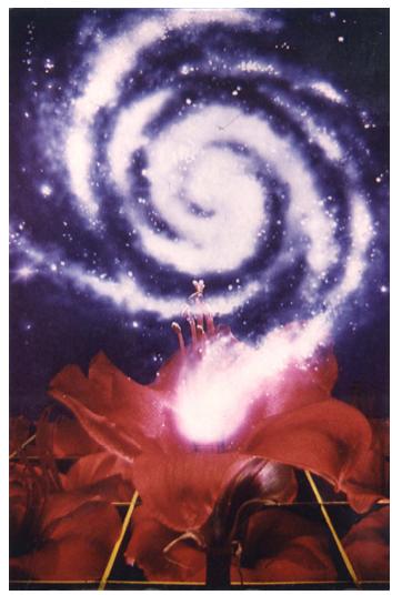 flower-galaxy
