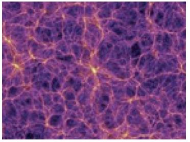 web-of-plasma